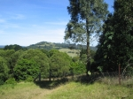 Lawn ave Robertson- land size is approx. 4000sqm with tranquil rainforest and bubbling brook.